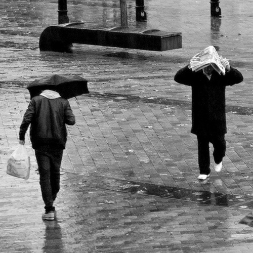 Umbrella vs Newspaper - Rain n' Brollies