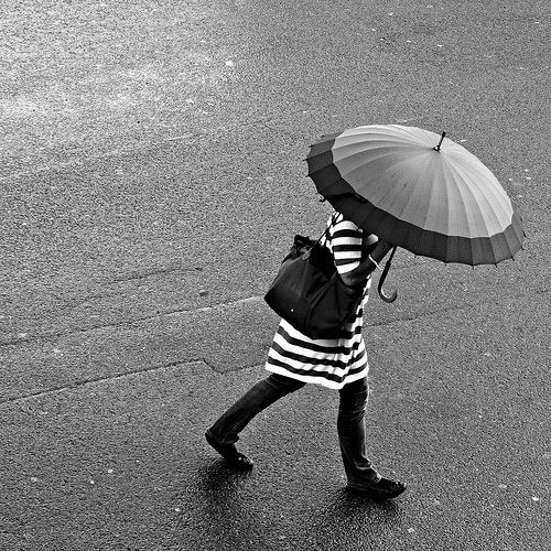 Stripes In The Rain - Rain n' Brollies