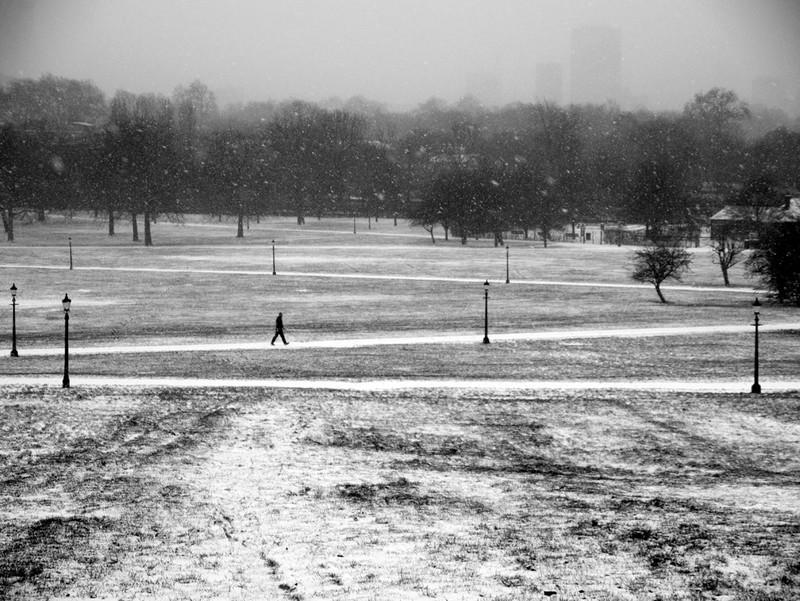 Primrose Hill snow series - London street photography photos 9