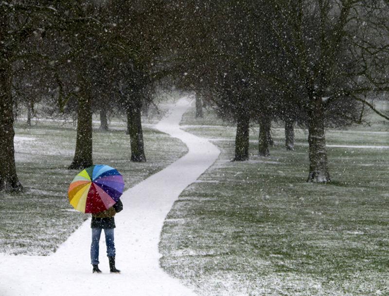 Primrose Hill Snow 10 - Winter Snow