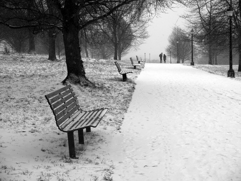 Primrose Hill - Winter Snow_7 - Winter Snow