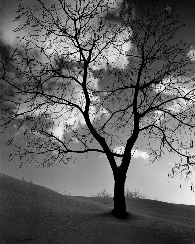 HANGING ON - BLACK AND WHITE LANDSCAPES