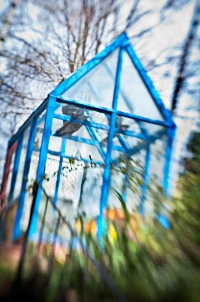 Blue Greenhouse - The Backyard Series