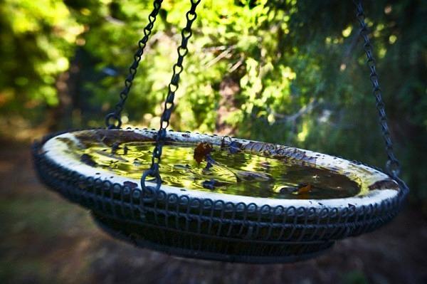 Swinging Water Bowl - The Backyard Series
