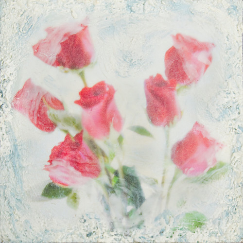 Red Roses - Veiled Flowers