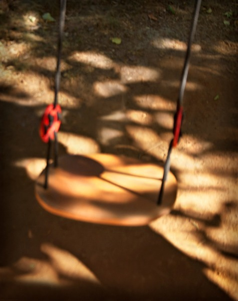 Swing in the Shadows - The Backyard Series