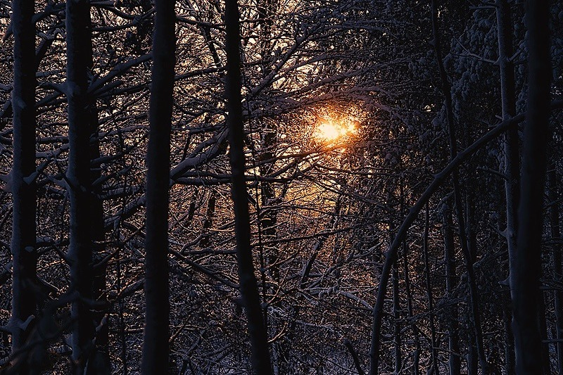 Last light - Portfolio