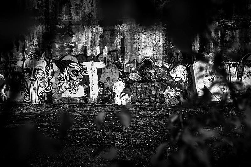 Graffiti - Portfolio