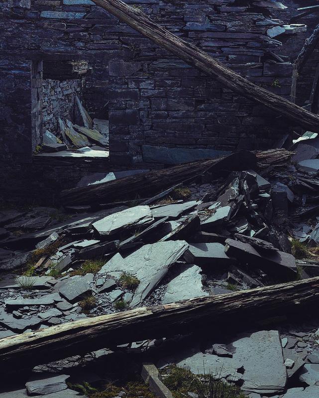 Collapse - Portfolio