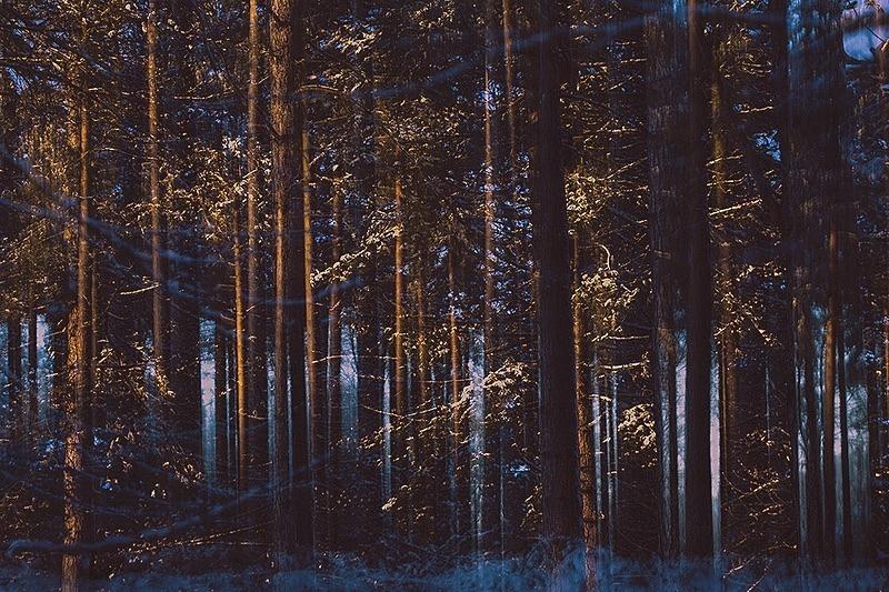 Winter layers - Portfolio