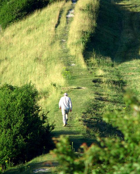 Cissbury 07 - Cissbury Ring
