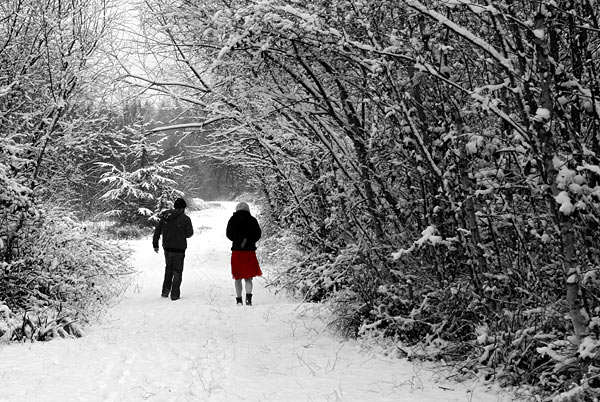 Snow - 32 - Snow