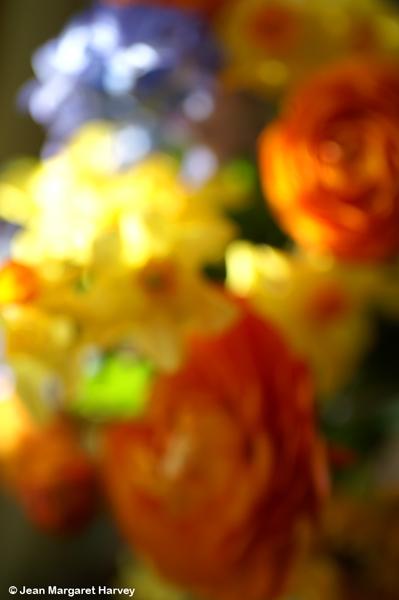 Flowers 16 - 06 - Flowers 16