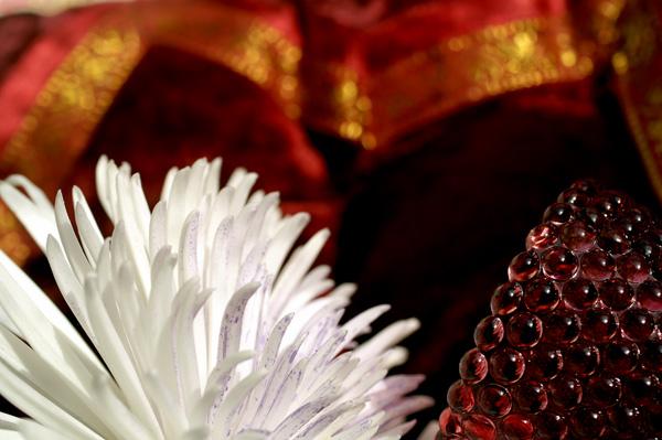 Flowers Set 03 - 12 - Flowers 03