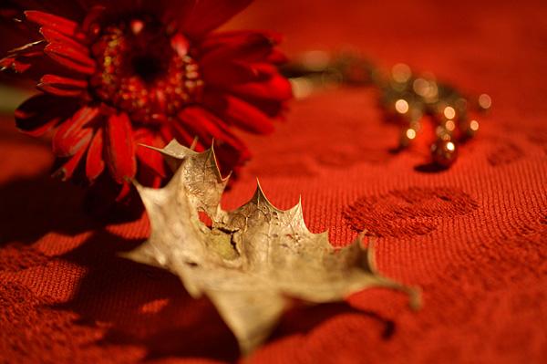 Flowers Set 09 - 04 - Flowers 09