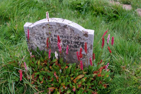 Okewood Churchyard - 11 - Okewood Churchyard