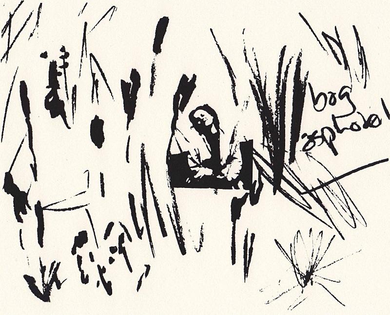 bog asphodel - a-mach an gleann: screenprints