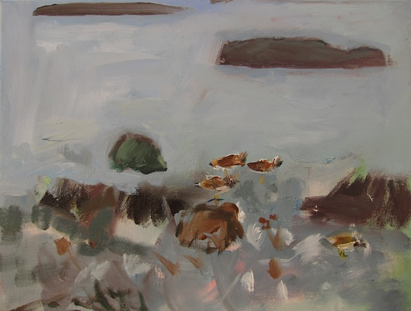 turnstones - paintings from field-sketches