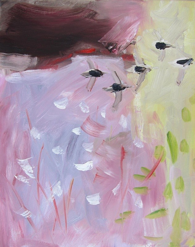 dunlin and bog-cotton - paintings from field-sketches