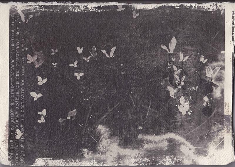 ''S tu bhi marbh ann an innis na sprèidhe' - astar: silver gelatin photographs