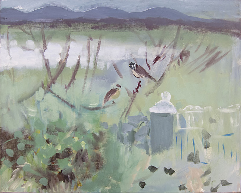 reed buntings, Beanntan Bharabhais - paintings from field-sketches