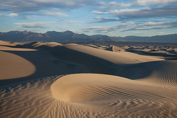 Rhythms in the sand. - American Landscape