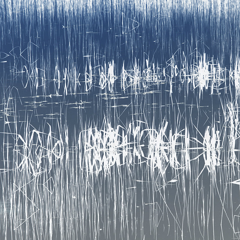 Pond No 2 - Abstract Photographs