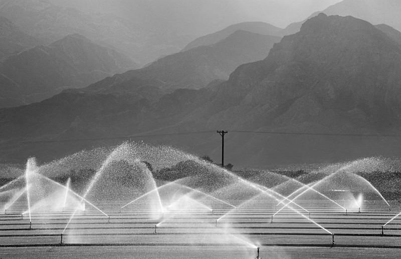 Mono American Sprinklers - Monochrome Landscape America