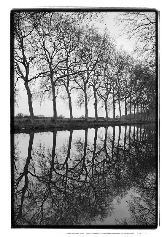 Canal France - Monochrome Landscape Europe