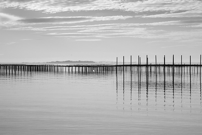 Oyster beds No1 - Monochrome Landscape Europe