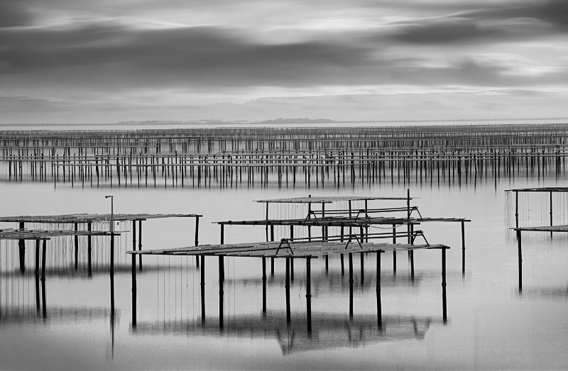 Oyster Beds No 3 - Monochrome Landscape Europe