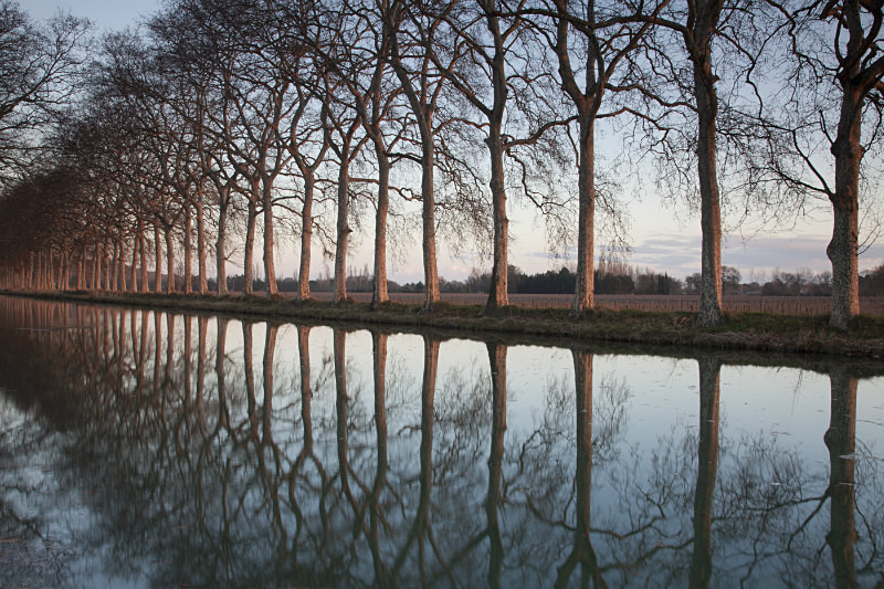 French Canal - European Landscape