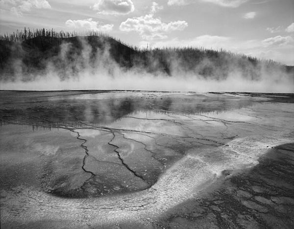 Yellowstone. - Monochrome Landscape America