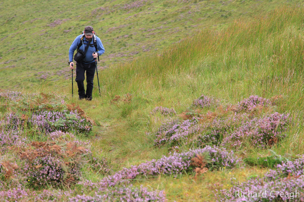 Walking in Heather - Adventure