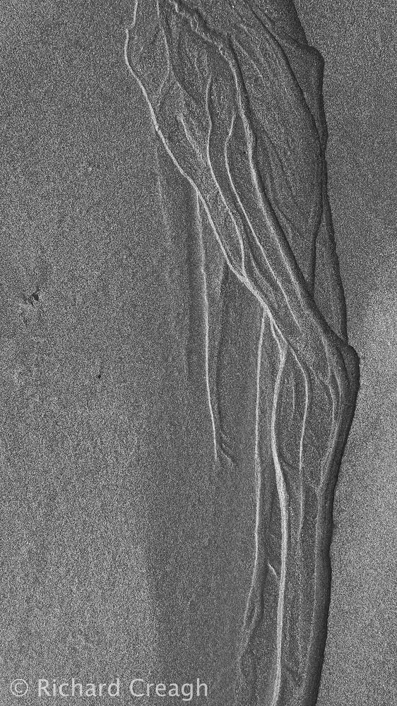 Sand Leg - Detail
