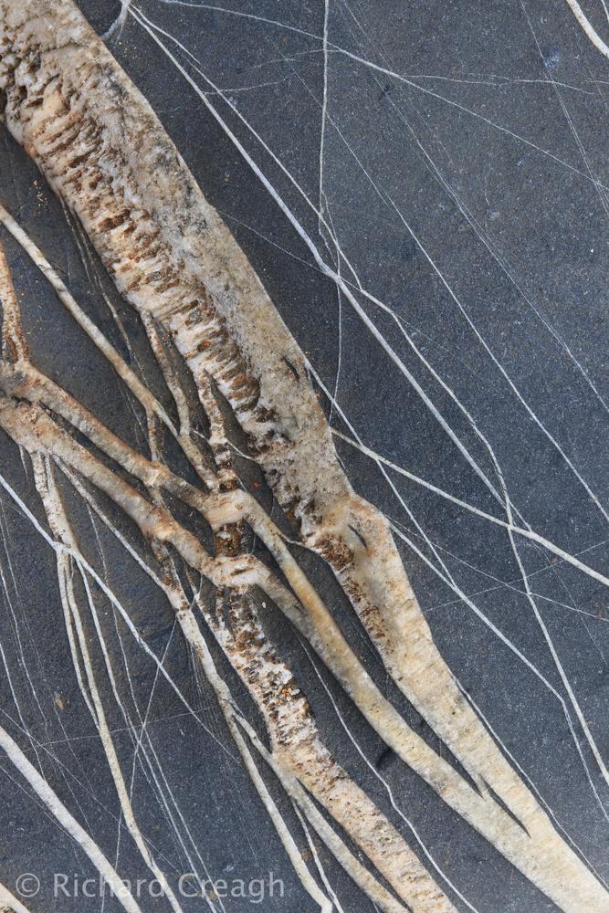 Quartz Bolt - Detail