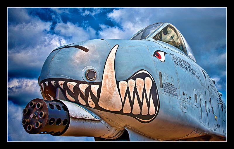 Warthog - Aircraft