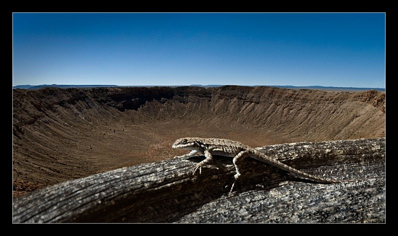 Lizard Crater - Nature
