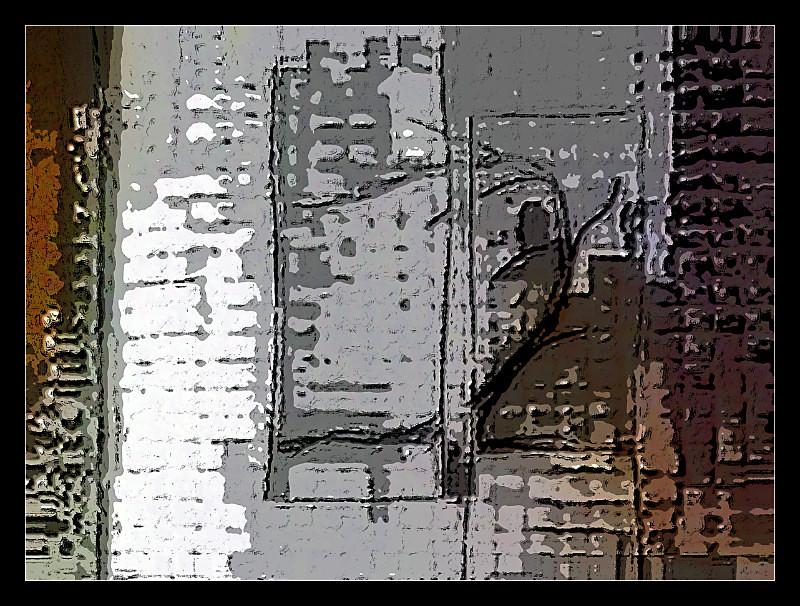 A Tree Grows in Brooklyn - Digital Distortion