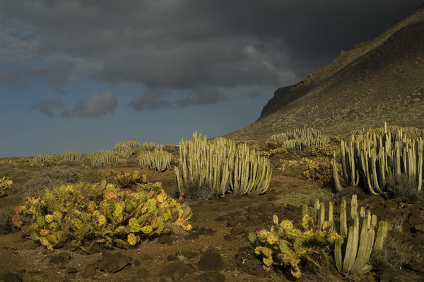 Clouds rolling in... - Impressions of Tenerife