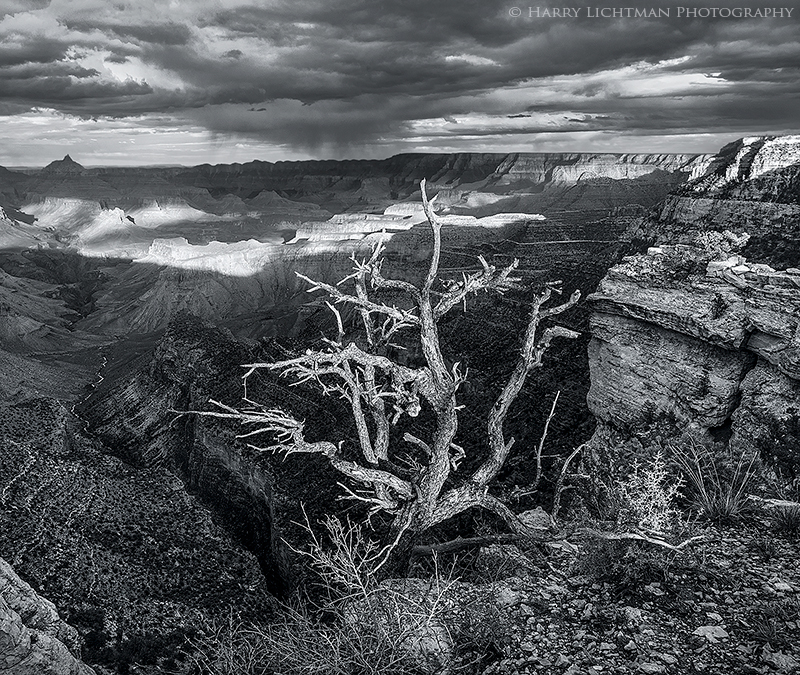 The Edge - Grand Canyon - South Rim