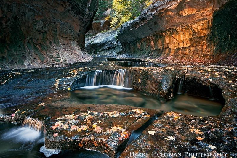 Golden Cascades - Zion National Park