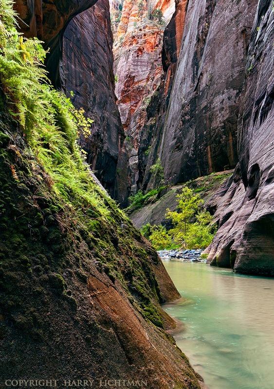 Prehistoric Passage - Zion National Park