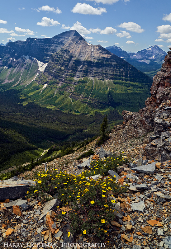 Mount Phillips - Glacier National Park