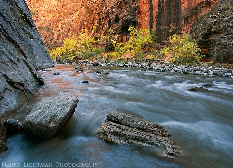 Narrows Oasis - Zion National Park