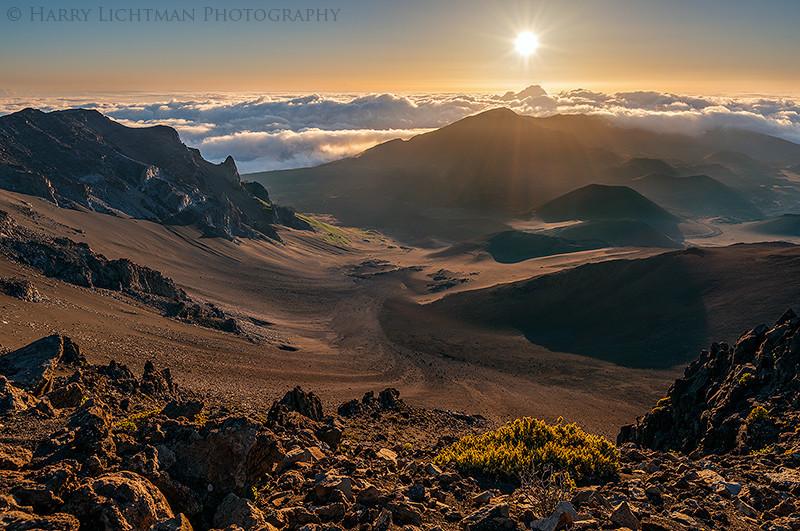 Radiance - Maui