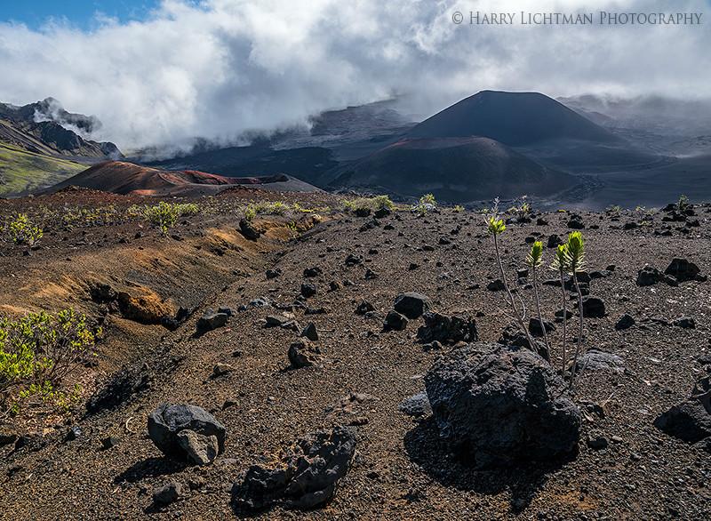 Haleakala Caldera - Maui