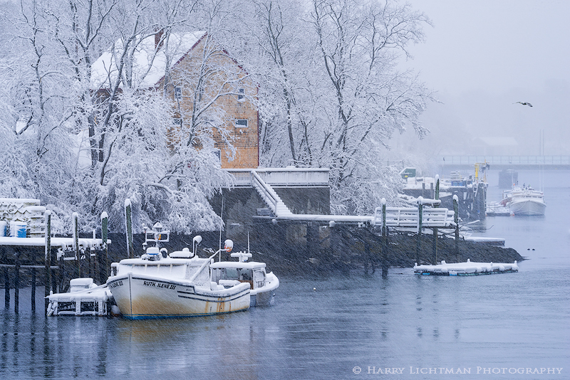 Kittery Foreside - Snow Day - Maine Coast & Mountains