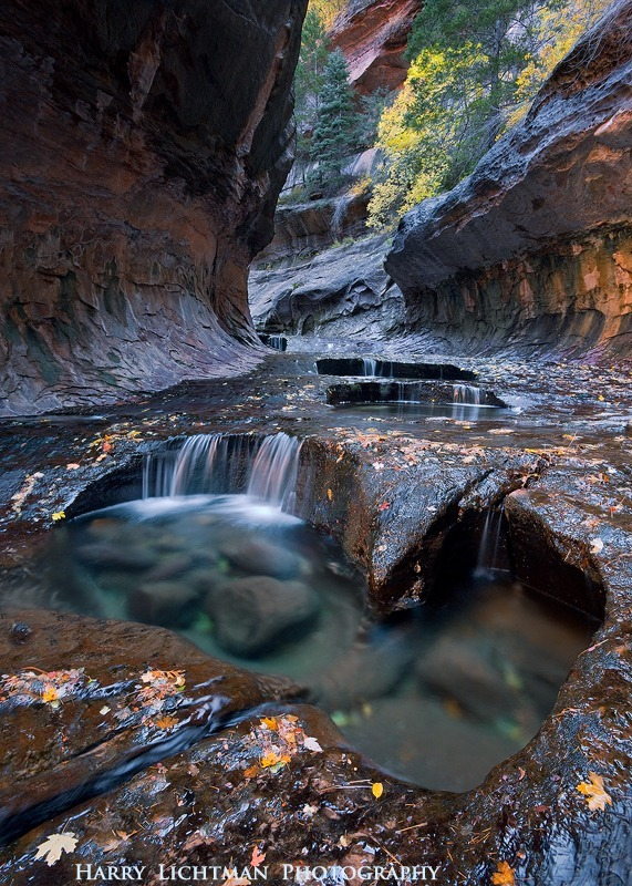 Water Carvings - Zion National Park