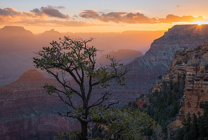 Canyon Daybreak - Grand Canyon - South Rim